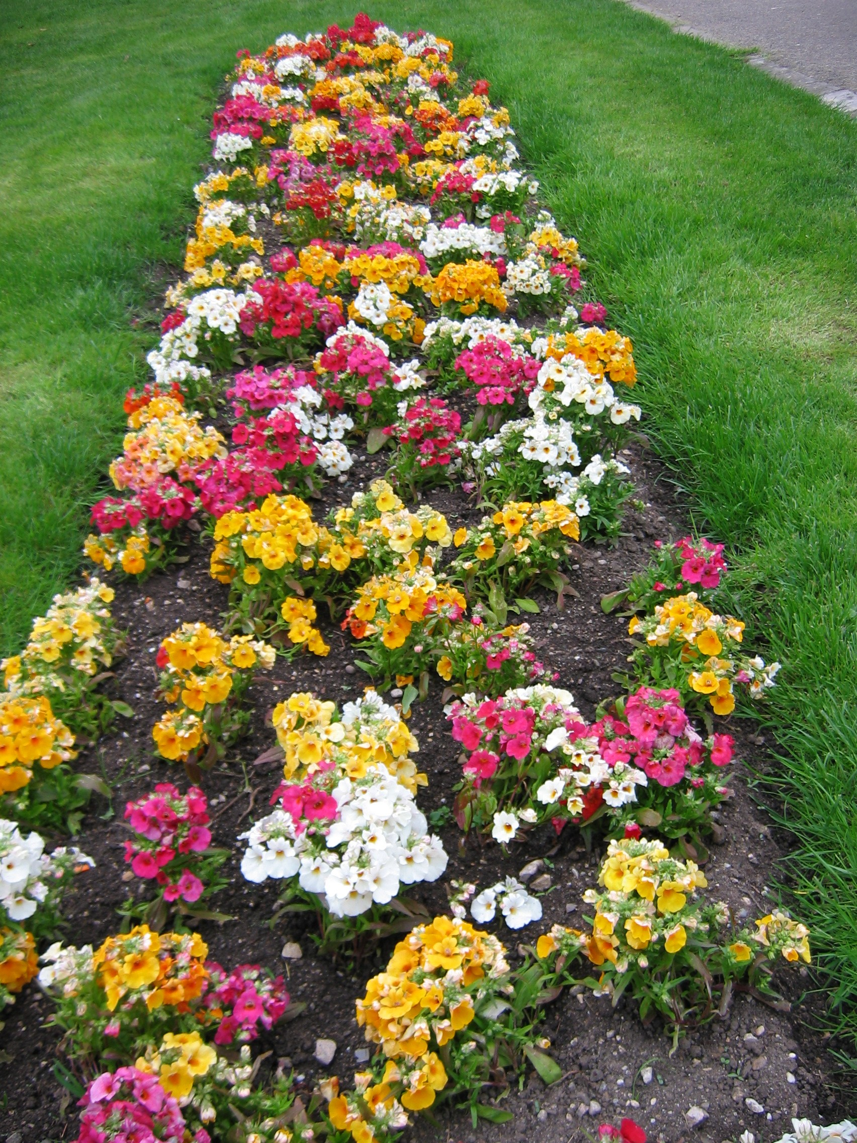 Flower bed designs flower beds and bed designs on pinterest for Best plants for flower beds